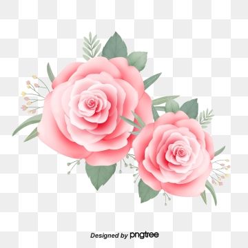 Hand Drawn Roses PNG Images.