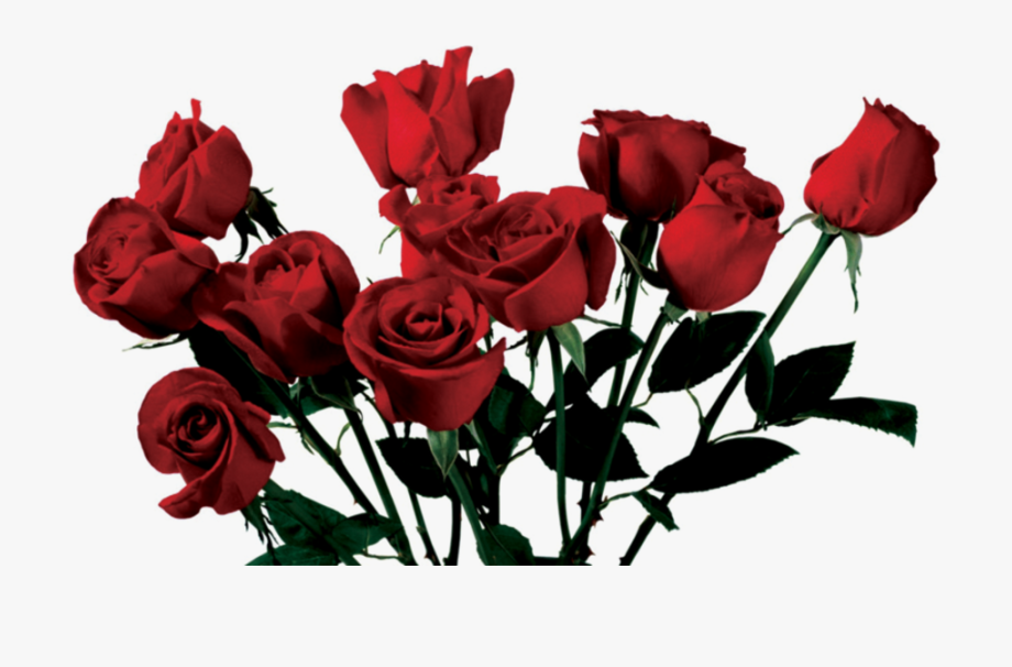 Rose Clipart Png Tumblr.