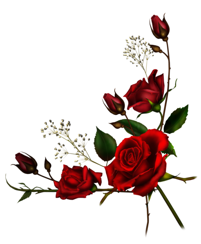 Tumblr Png Roses Vector, Clipart, PSD.