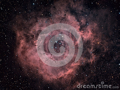 Rosette Nebula Beautiful Night Sky The Rose Of Night Sky Stock.