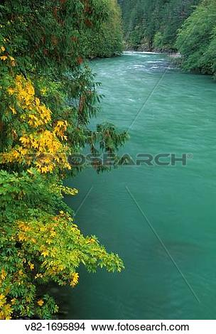 Stock Photo of Skagit River from Trail of the Cedars river bridge.