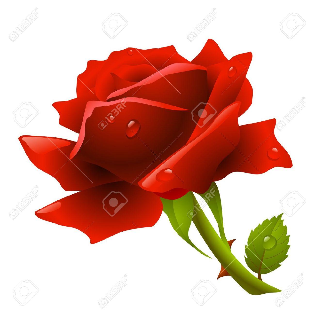 Rosa Rossa Clipart Royalty.