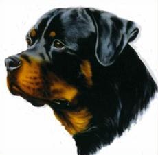 Free Rottweiler Clipart.
