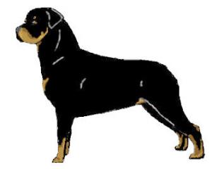 Rottweiler Clip Art Download.