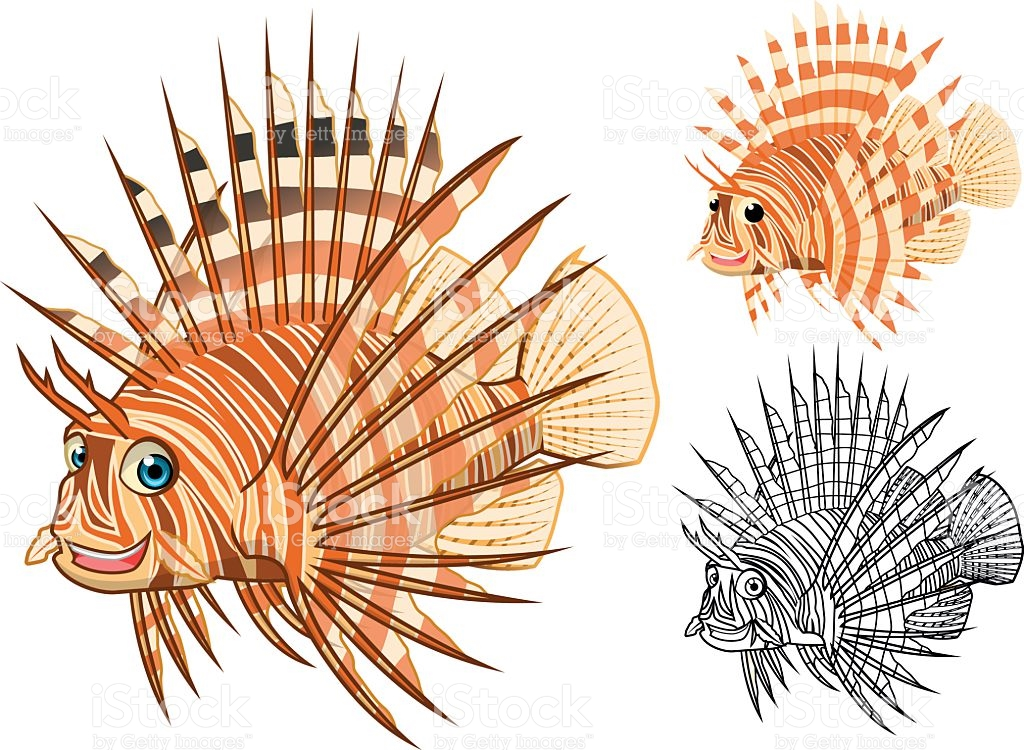 Hochwertige Rotfeuerfisch Comicfigur Vektor Illustration 487777616.