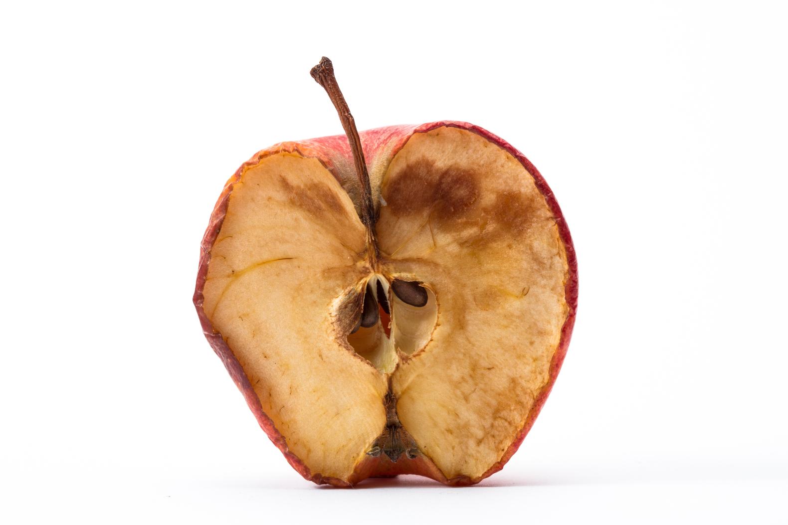 Rotten Apple #108279.