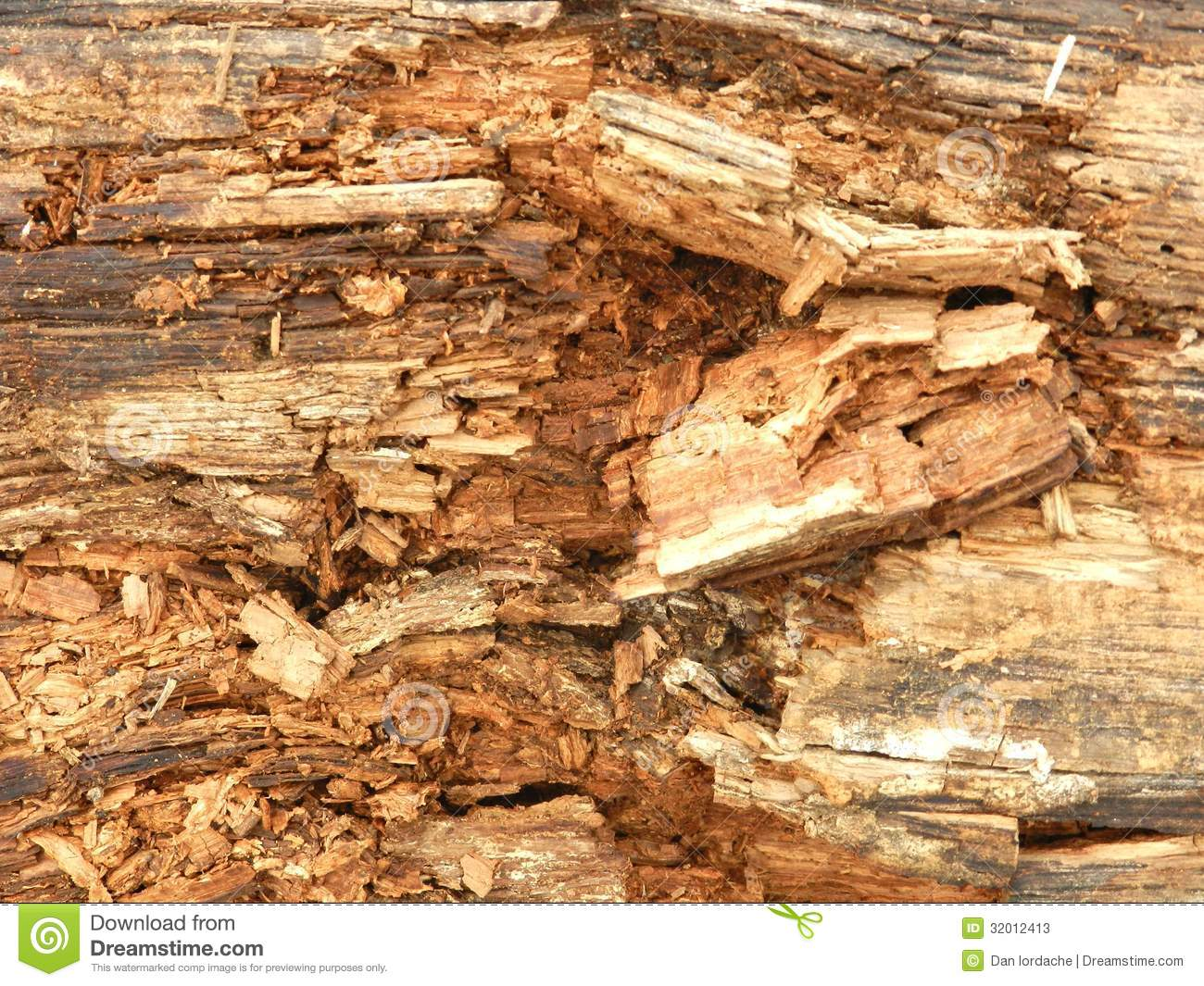 Rotten Wood Texture Stock Photos.