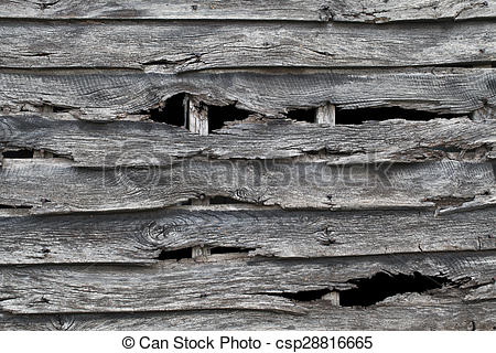 Stock Image of Old wooden barn wall pattern, with holes in rotten.
