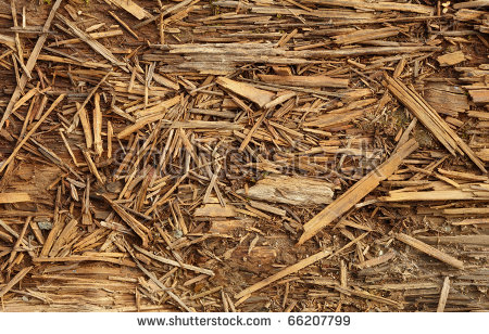Rotten Wood Stock Photos, Royalty.