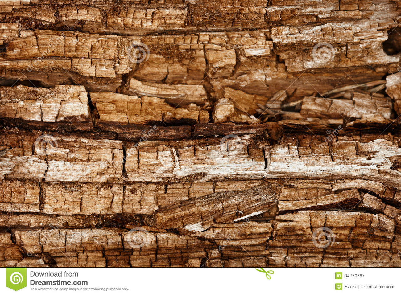 Rotted Wood Texture Royalty Free Stock Images.