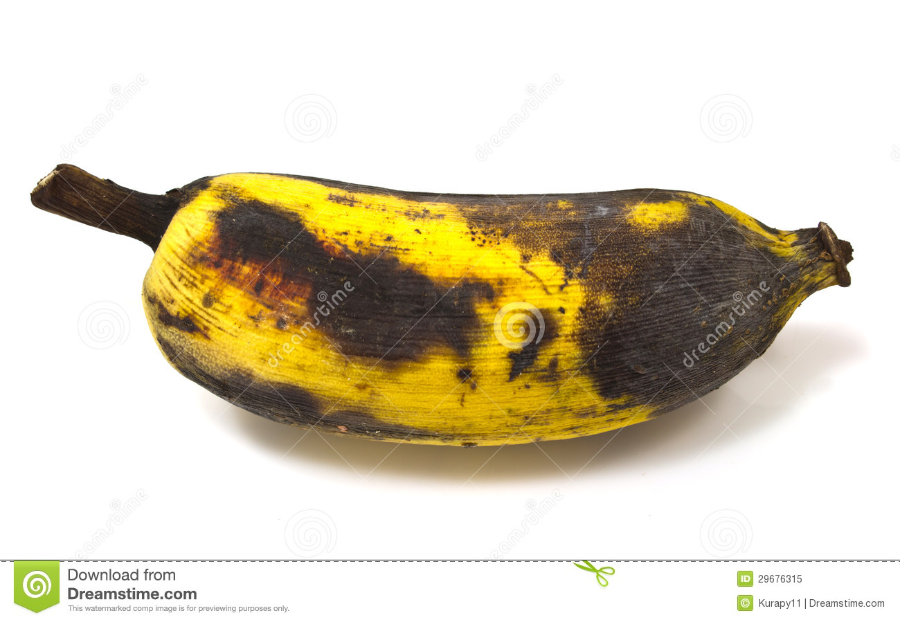 Rotting Banana Stock Photo.