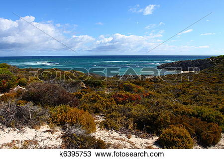 Stock Photo of Rottnest island in Australia k6395753.