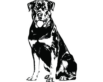 Rottweiler Clipart Black And White (105+ images in.