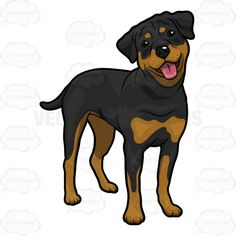 Cliparts Rottweiler Puppy Free Download Clip Art.