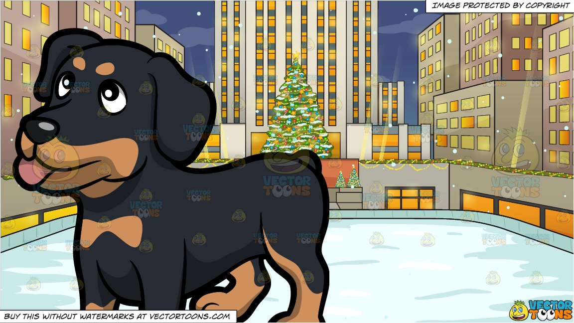 A Friendly Rottweiler Puppy Looking At Its Owner and Rockefeller Center At  Christmas Background.