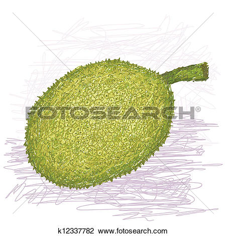 Clip Art of breadfruit rough.