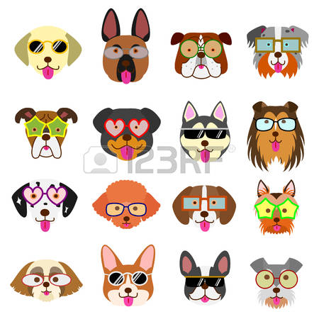 99 Rough Collie Stock Illustrations, Cliparts And Royalty Free.