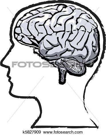 Clip Art of Rough human brain mind grunge sketch k5827909.