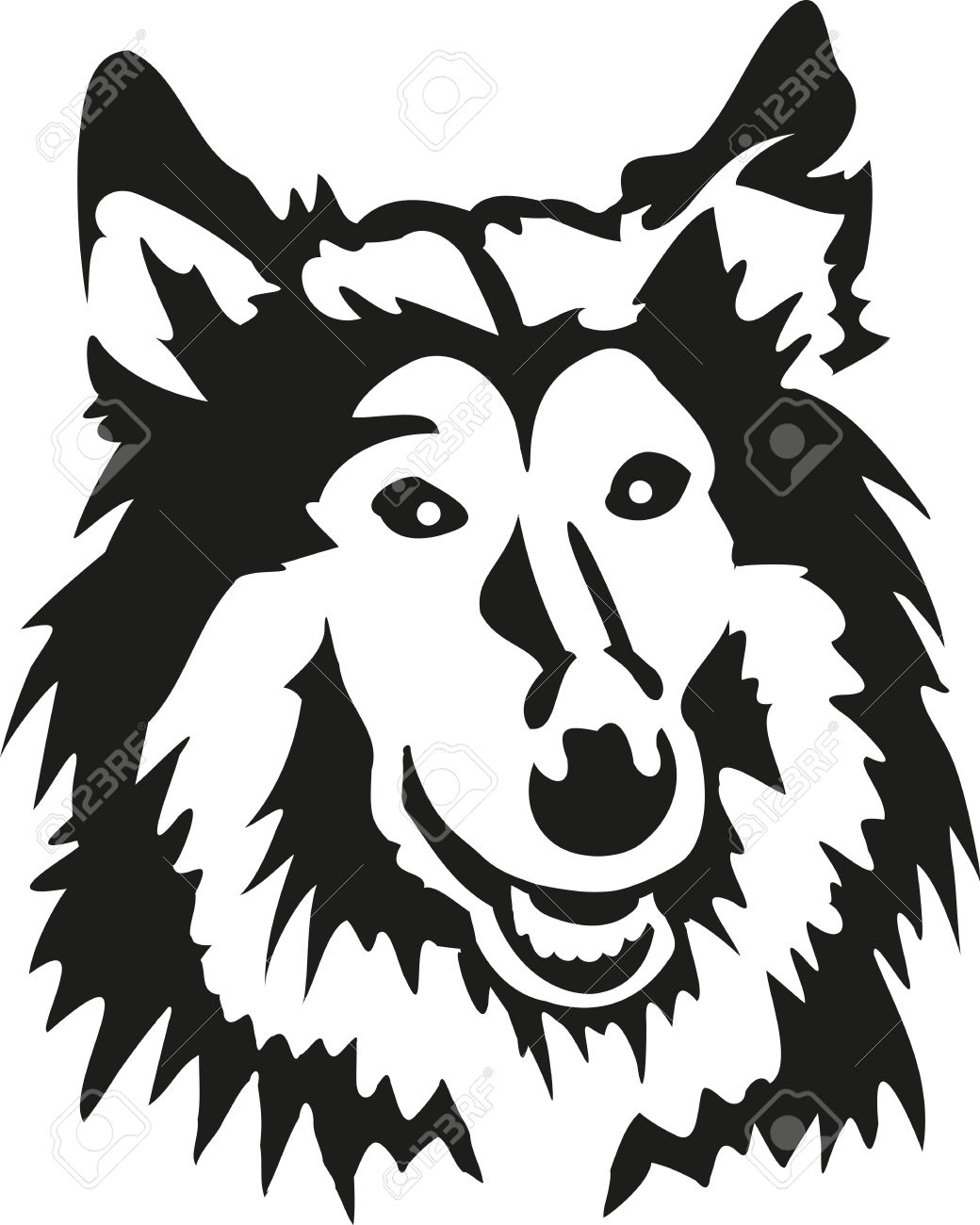 Rough Collie Head Royalty Free Cliparts, Vectors, And Stock.