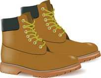 High Gym Shoes Stock Illustrations.