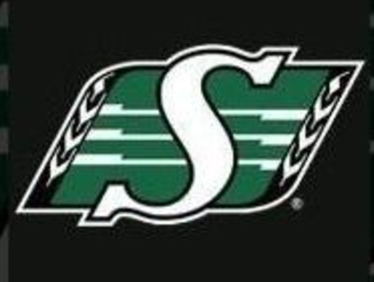 Image result for saskatchewan roughriders logo in 2019.