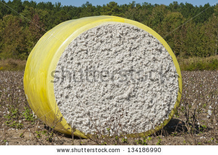 Cotton Bale Stock Photos, Royalty.