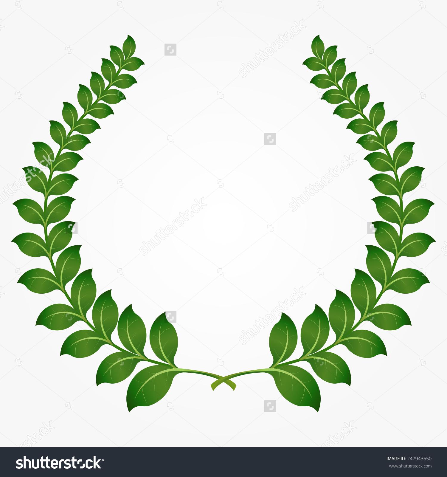 Round Green Laurel Wreaths Laurel Branch Stock Vector 247943650.