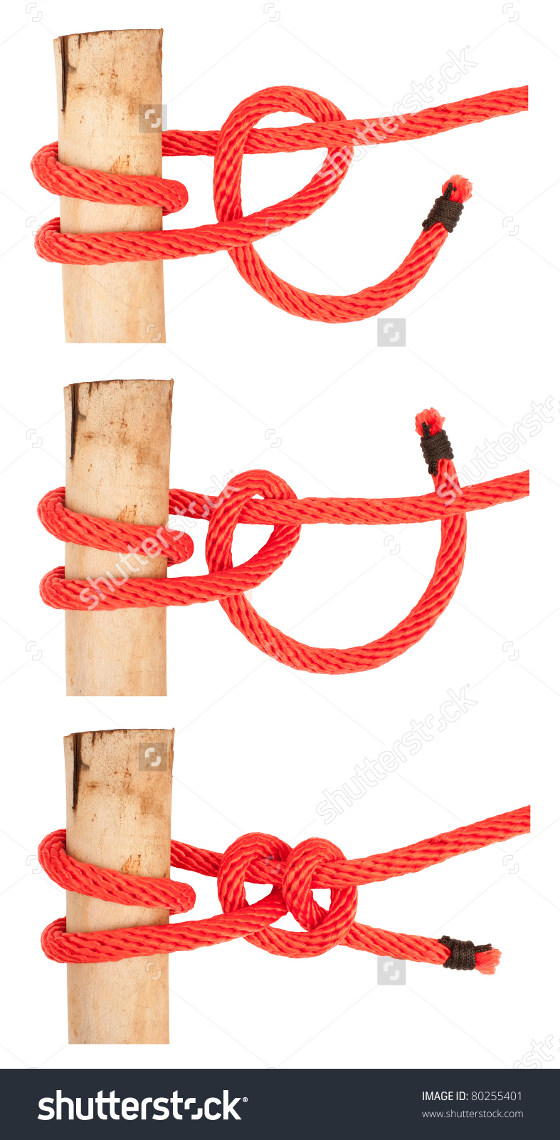 Knot Series : Round Turn And Two Half Hitch For Scout Army Sailor.