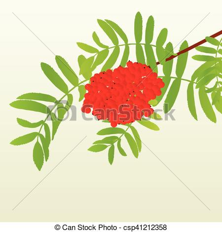 Clipart Vector of Rowan berries tree branch with leaves autumn.