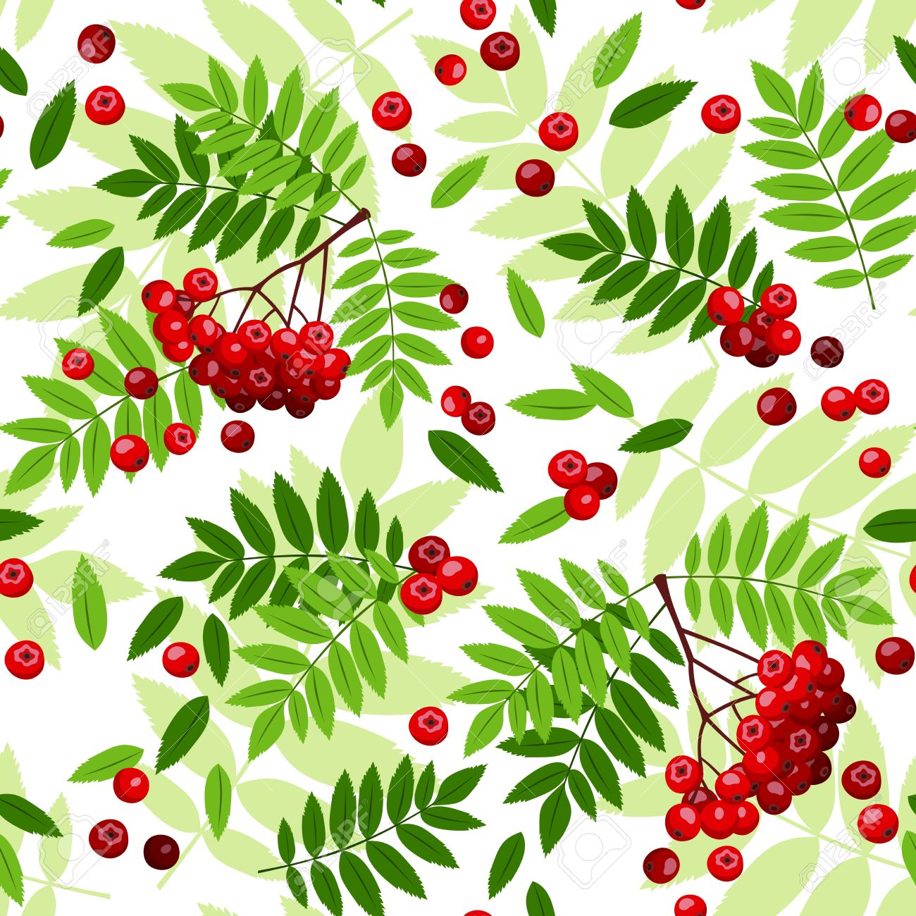 Seamless Pattern With Rowan Leaves And Berries Vector Illustration.