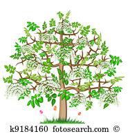 Rowan tree Illustrations and Clip Art. 214 rowan tree royalty free.