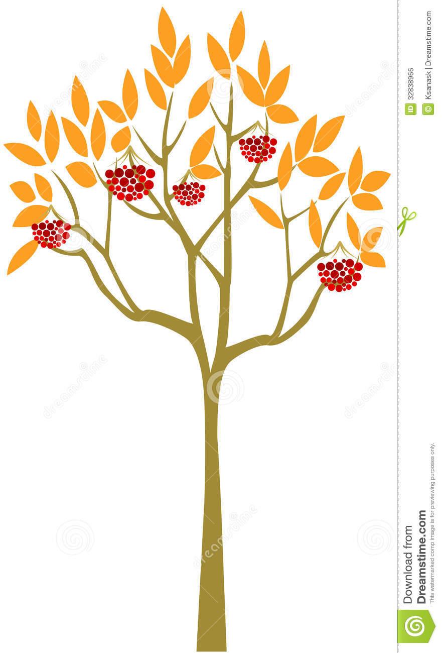 Abstract Rowan Tree Royalty Free Stock Image.