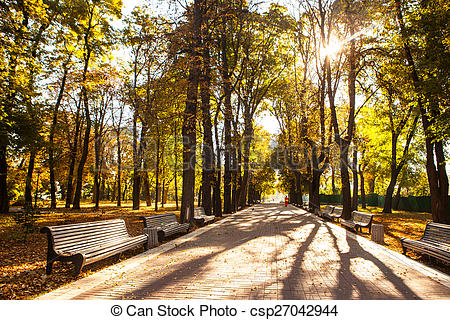 Stock Photo of The perspective of the row of benches in autumn.
