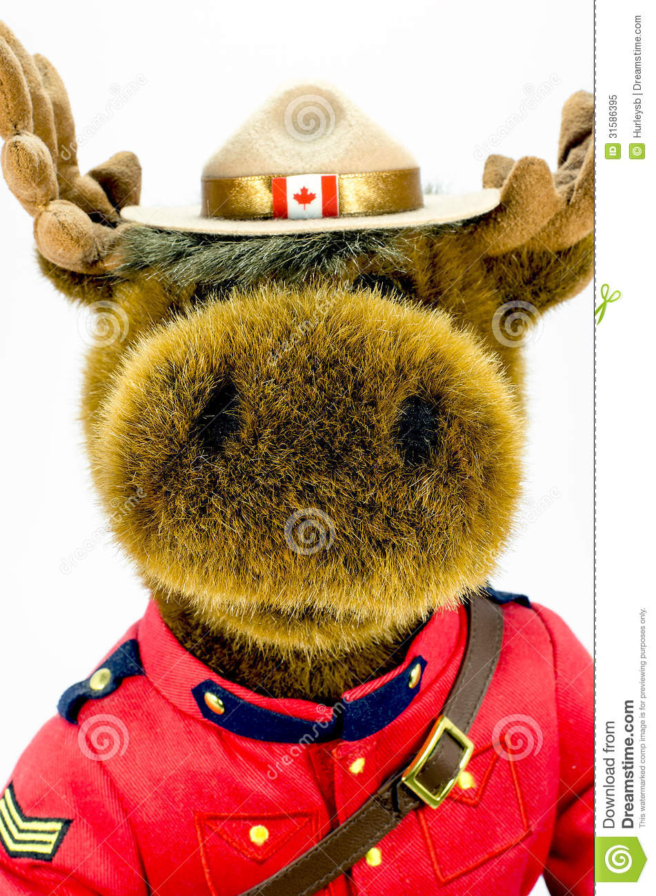 Royal Canadian Mounted Police Moose Soft Toy Royalty Free Stock.