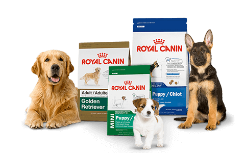 Pet Food Cyprus delivers Royal Canin to your home!.