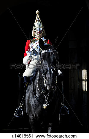 Stock Photography of England, London, Whitehall. A Royal Horse.