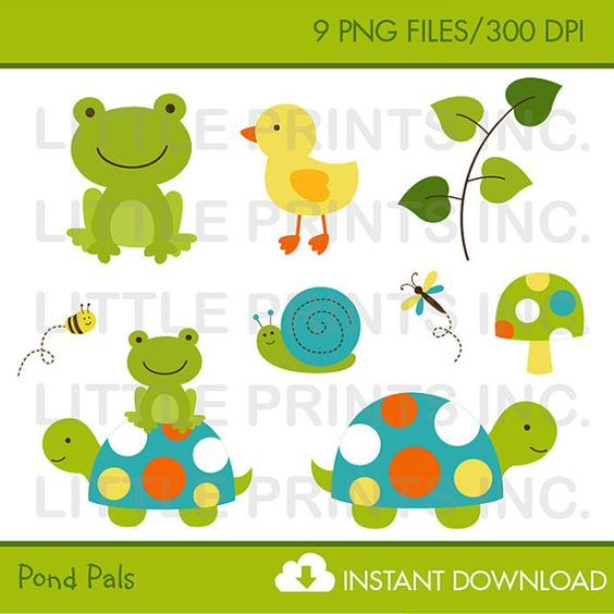 Cute Frog & Turtle Clipart / Turtle Clipart / Frog Clipart / Pond.