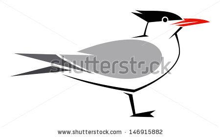 Tern Stock Photos, Royalty.