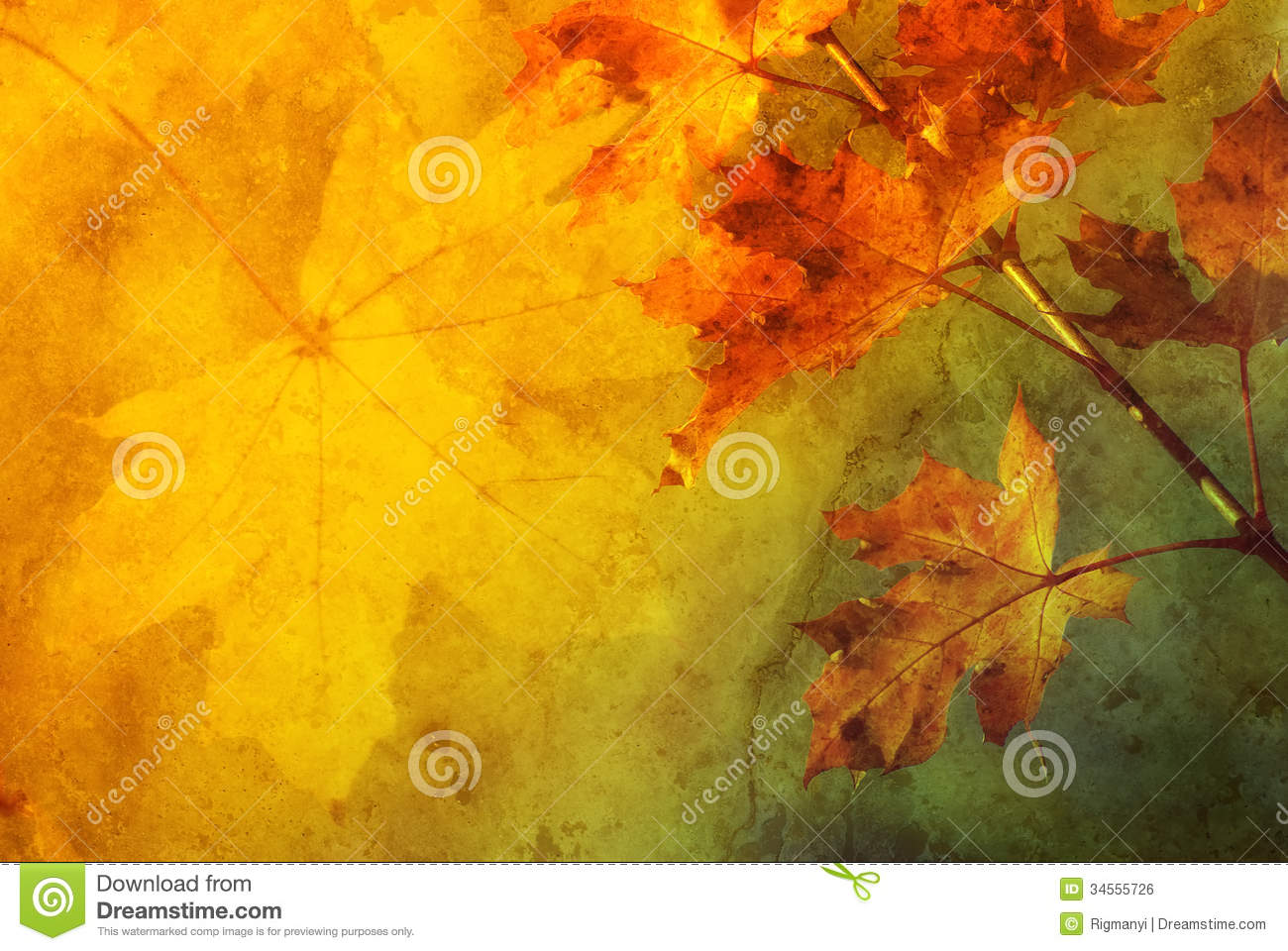 Colourful Frame Background