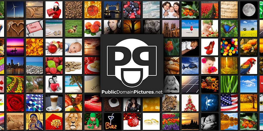31 free public domain image websites.