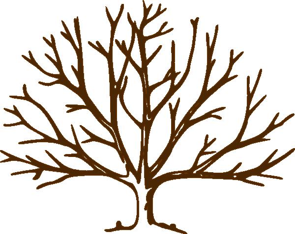 bare tree.