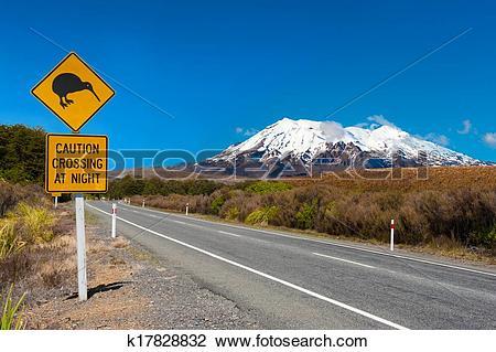 Stock Photo of Kiwi and mount Ruapehu k17828832.