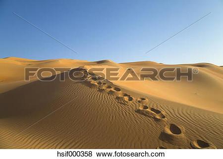 Pictures of United Arab Emirates, Dubai, Rub al.