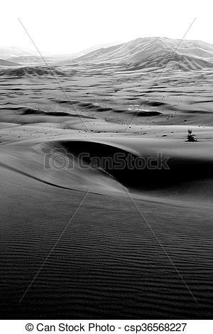 Stock Photo of in oman old desert rub al khali the empty quarter.