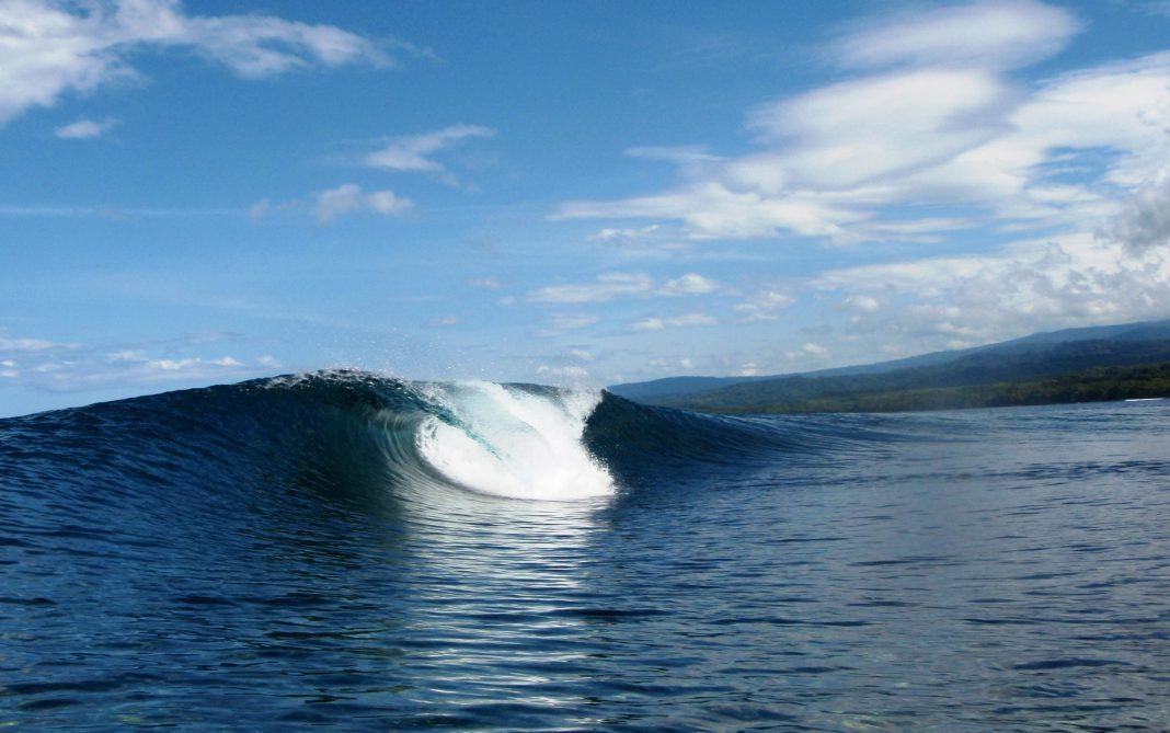 Rubio Plantation Retreat • Surfing Life.