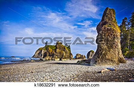 Stock Photography of Sea Stack on the Shore at Ruby Beach.