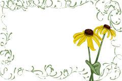 Rudbeckia Clipart by Megapixl.