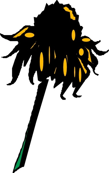 Flower Rudbeckia clip art Free vector in Open office drawing svg.