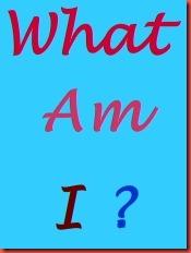 Quizizz Question Set.