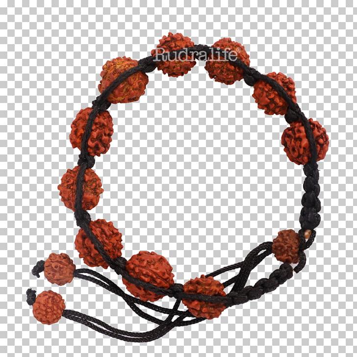 Bracelet Bead Rudralife Rudraksha Thread, Rudraksha PNG.
